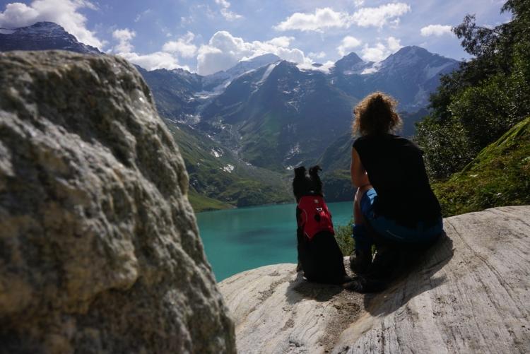 wandelingen met je hond in de bergen